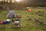 Campsite at Woodhen Creek
