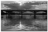 Bats at the Congress Bridge in Austin, Texas