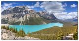 Peyto Lake, Banff