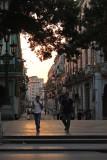 Evening stroll.jpg
