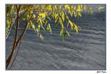 Fall on the Lake5.jpg