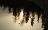 Evening Reflections.jpg