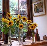 Sunny Window.jpg