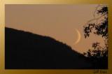 August Moon2.jpg