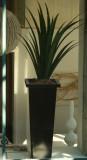Glassed plant2.jpg
