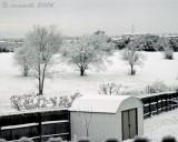 Texas Winter Wonderland