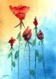 Flower Study    8-11