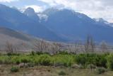 Eastern Sierra - June 2011