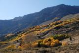 Eastern Sierra - October 2011 (Day 1)