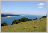 Bay of Plenty from The Mount