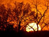 Nauvoo Sunset