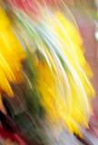Capturing the Inner Spirit