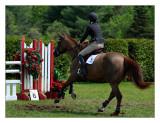 Eastwood Equine 2011