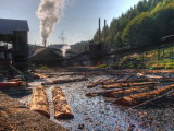 Hull-Oakes: Steam operated lumber mill in Western Oregon