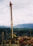 Thunderbird TY-90 at Nygaard Logging