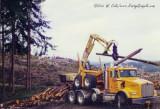My Own Logging Fun: The 1990's