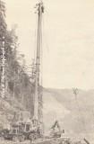 Skagit BU-99 with T-110HD SP Tower