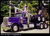 Trucking Gallery: The Log Haulers