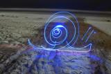 snail on the beach