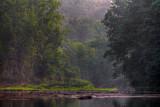 Misty Morn On Cazenovia Creek