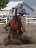 Western NY Cowboy