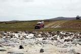 Bluff cove Falkland Islands