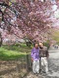 New York Spring 2012
