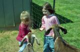 Jersey Girls meet Billy Goats
