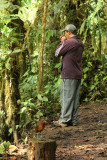 Giant Antpitta and Angel