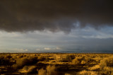 Before the Storm in the Mojave Desert