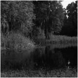 Peace River, 5x5