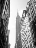 A few New York scenes