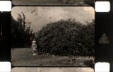 16mm_fw4e1588_000004.jpg