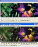 Compare_002.jpg
