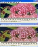 Compare_003.jpg