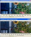 Compare_004.jpg