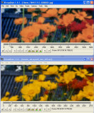 Compare_005.jpg