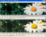Compare_010.jpg