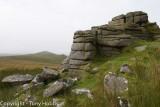Dartmoor 15.8.11