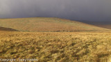 A quick step through Dartmoor's hail and snow storm and sun.  13.12.11
