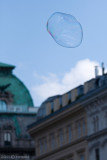 A bubble flies....  (see next image)