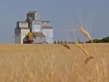 Saskatchewan's Grain Elevators