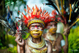 Portrait Of Papua New Guinea