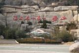 Qingtao Feb 11