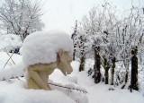 sneeuw12-2010.jpg