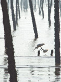 [2012.07.18] The fishing spot