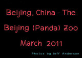 Beijing, China - The Beijing (Panda) Zoo (March 2011)