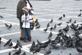 A little boy (& grandmother) feeding pigeons (the pigeons and the boy were having a good day)!