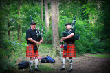 The Lowland pipers
