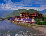 Springtime Punakha Dzong